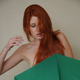 Green Umbrella - Picture 2
